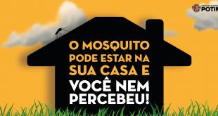 Dengue 2020